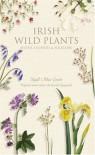 Irish Wild Plants: Myths, Legends & Folklore - Niall Mac Coitir