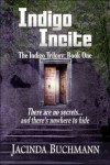 Indigo Incite (The Indigo Trilogy) - Jacinda Buchmann