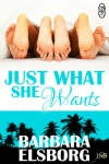 Just What She Wants - Barbara Elsborg