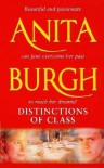 Distinctions of Class - Anita Burgh