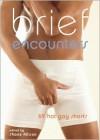 Brief Encounters: 69 Hot Gay Shorts - Shane Allison (Editor)