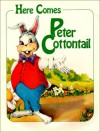 Here Comes Peter Cottontail - Steve Nelson;Jack Rollins