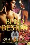 Blind Destiny - Shiloh Walker