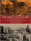 The Great Chicago Fire - David Lowe, Mabel McIlvaine
