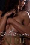 A Chance Encounter - A.J. Lyle