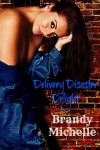 Delivery Disaster Delight - Brandy Michelle