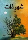 Urdu Novel: Shehr-e-Zaat by Umera Ahmed - Umera Ahmed, Hasan Umar, Muhammad Farrukh Mahmood, Lubna Ikhlaq
