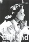 Divas: Judy Garland - David Bret