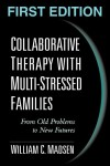 Collaborative Therapy With Multi-Stressed Families: From Old Problems to New Futures - William C. Madsen