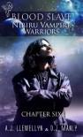Blood Slave: Nibiru Vampire Warriors - A.J. Llewellyn, D.J. Manly