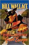 The Great Escape - Bill Wallace, David Slonim
