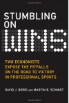 Stumbling On Wins: Two Economists Expose the Pitfalls on the Road to Victory in Professional Sports - David J. Berri, Martin B. Schmidt