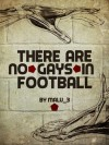 There Are No Gays in Football - Malu_3 (Grainne)