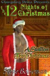 A Stallion For Christmas - Steve Boiseman