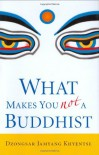 What Makes You Not a Buddhist - Dzongsar Jamyang Khyentse