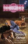 Shining's Orphan - Joanna Campbell