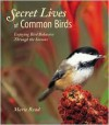 Secret Lives of Common Birds: Enjoying Bird Behavior Through the Seasons - Marie Read