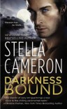 Darkness Bound (Chimney Rock) - Stella Cameron