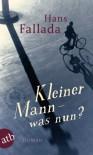 Kleiner Mann - was nun?: Roman - Hans Fallada