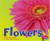Flowers (Plant Parts) - Vijaya Bodach