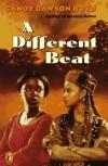A Different Beat - Candy Dawson Boyd