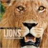 Face to Face with Lions - Dereck Joubert