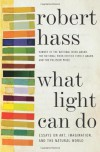 What Light Can Do: Essays on Art, Imagination, and the Natural World - Robert Hass