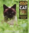Wild Discovery Guide to Your Cat: Understanding and Caring for the Tiger Within - Margaret Lewis