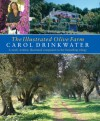 The Illustrated Olive Farm: A Newly Written, Illustrated Companion to Her Bestselling Trilogy - Carol Drinkwater