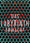 Das Labyrinth erwacht: Thriller - Rainer Wekwerth