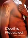 A Destiny Revealed - Dria Andersen