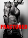Fractured: The Mend Me Series (BBW Erotic Romance) - Evelyn Rosado