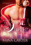 What the Sleigh?: Paranormal Christmas Elves / Shapeshifter Romance (Paranormal Protection Agency Book 10) - Mina Carter