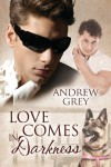 Love Comes in Darkness  - Andrew  Grey