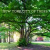 New York City of Trees - Benjamin Swett