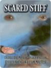 Scared Stiff - Laura Baumbach, William Maltese, Josh Lanyon