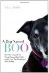 A Dog Named Boo: How One Dog and One Woman Rescued Each Other--and the Lives They Transformed Along the Way - Lisa J. Edwards, Lisa Collier Cool