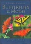 A Pocket Guide to Butterflies & Moths (Pocket Guide) - Elizabeth Balmer