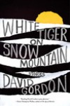 White Tiger on Snow Mountain: Stories - David Gordon