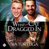 What the Cat Dragged In  - Ba Tortuga, Joe Formichella