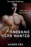 Handsome Hero Wanted - James   Cox