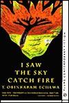 I Saw the Sky Catch Fire - T. Obinkaram Echewa