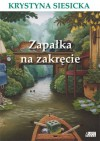 Zapałka na zakręcie - Krystyna Siesicka