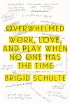 Overwhelmed: Work, Love, and Play When No One Has the Time - Brigid Schulte
