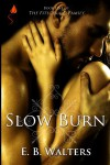 Slow Burn (The Fitzgerald Family series) - E.B. Walters