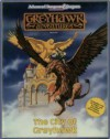 The City Of Greyhawk (Advanced Dungeons And Dragons: Greyhawk Adventures) - Douglas Niles, Mike Breault, Kim Mohan