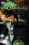 Sandman, Tom 8: Zabawa w ciebie - Colleen Doran, Paulina Braiter, Shawn McManus, Dick Giordano, George Pratt, Neil Gaiman