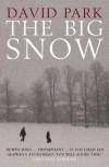 The Big Snow - David Park