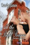 All The Right Reasons (Damaged Heroes, Book 3) - Sandy James