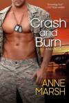 Crash and Burn - Anne Marsh